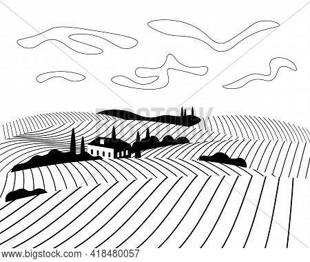 Vineyard Wine Grapes Hills Farm Poster Concept. Romantic Rural Vines Plantation Rows Landscape In Su