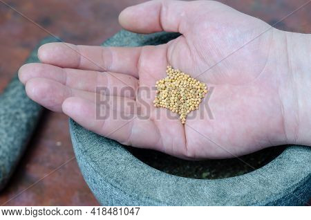 Dry Mustard Seed In A Man's Hand Close-up. A Portion Of Dried Spices In The Palm Of His Hand. Gray S