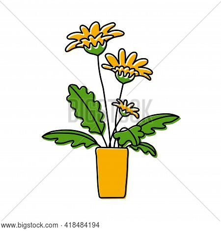 Potted Gerbera Or Chamomile Sketch. Vector Indoor Flower In A Pot. Doodle Color Illustration Of A Pl