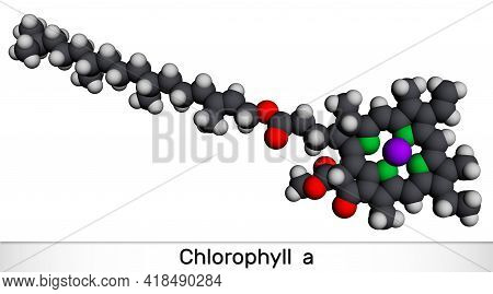 Chlorophyll A, Chlorophyll Molecule. It Is Photosynthetic Pigment Used In Oxygenic Photosynthesis. M