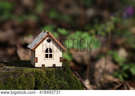 Wooden House Model In A Forest On Mossy Stump On Spring Flowers Background. Concept Of Country Cotta