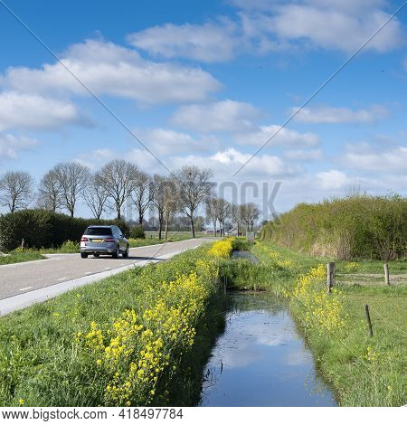 Car On Country Road In Dutch Countryside Between Den Bosch And Zaltbommel In Province Of Brabant Wit