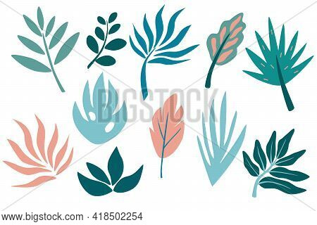 Set Of Tropical Leaf, Greenery, Leaves, Twig, Branch. Hand Drawn Botanical Graphic Elements. Collect