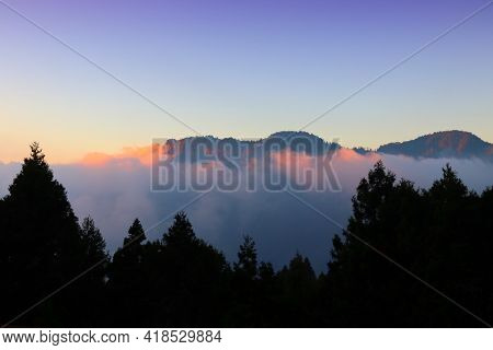 Alishan Mountains Sunset. Alishan National Scenic Area In Taiwan - Beautiful Cypress And Cedar Trees