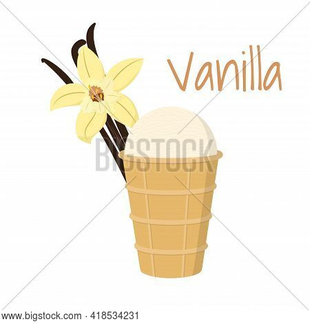 Cute Tasty Vanilla Ice Cream In Waffle Cup With Vanilla Flower And Sticks. Isolated On White. Vector