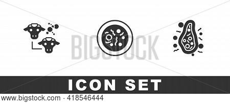Set Cloning, Petri Dish With Bacteria And Bacteria Icon. Vector
