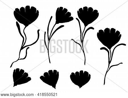 Vector Silhouette Of Flowers, Black Color Isolated On White Background