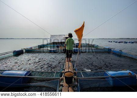 22/mar/2018/kalasin Thailand:fishermen Working In Fish Farming In Lam Pao Dam In Thailand Are Feedin