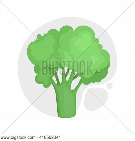 Broccoli With Stalks And Tops. Composition With Brocoli With Lush Heads And Stems. Cartoon Realistic