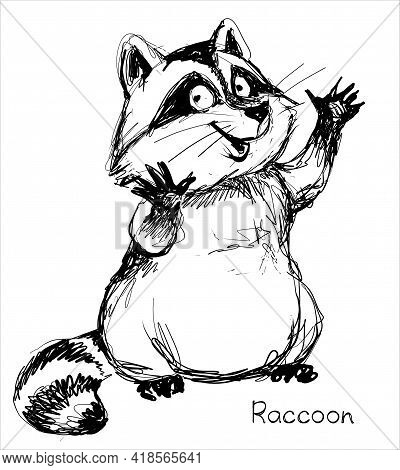 Vector. A Graphic Black And White Sketch Of A Funny Raccoon.