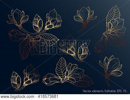 Golden Leaves. Magnolia. Set Of Golden Leaves On A Dark Glowing And Shiny Background. Vector.