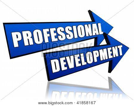 Professional Development In Arrows