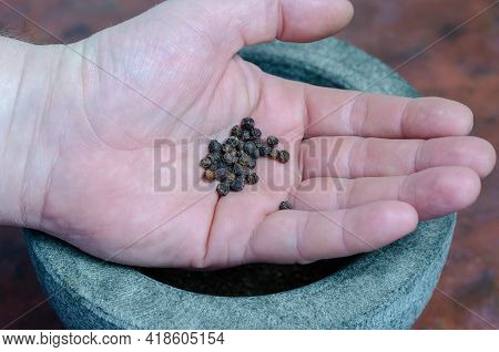 Dried Peppers In The Man's Hand Close-up. A Portion Of Dry Spices In The Palm Of His Hand. Gray Ston