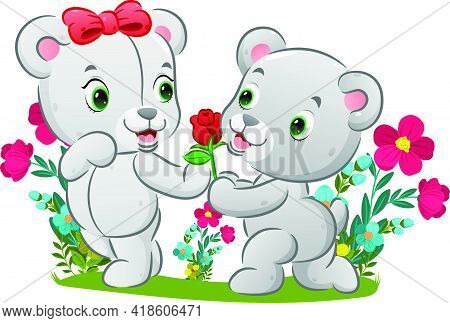 The Cute Bear Is Kneeling To His Girl And Holding The Red Rose Of Illustration