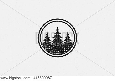 Spruce Trees Depicted Inside Circle Isolated On White Background Hand Drawn Stamp Effect Vector Illu