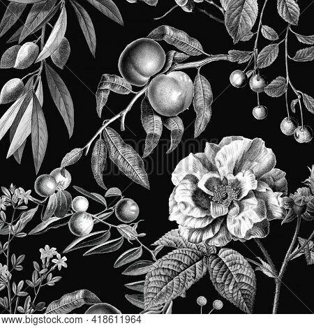 Vintage rose pattern black and white botanical and fruits illustration