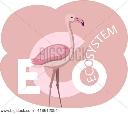 Eco Lettering With Highlighted Letter Eco. Caring For Ecology And Environment Of Planet. Flamingos A