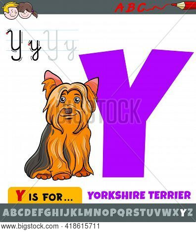 Educational Cartoon Illustration Of Letter Y From Alphabet With Yorkshire Terrier Dog Animal Charact
