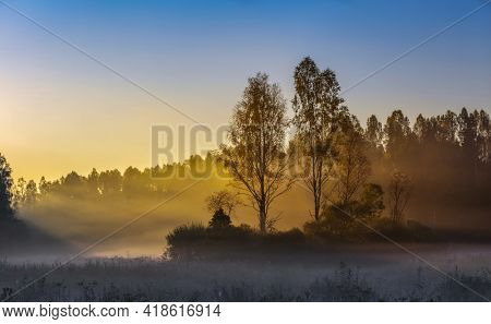 Autumn fog in morning. Sunrise misty forest landscape. Pskov region, Russia.