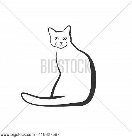 Cat Logo - Animal Cute Pet Kitty Domestic Feline Adorable Friendly Mammal Fur Love Playful Mascot Ve