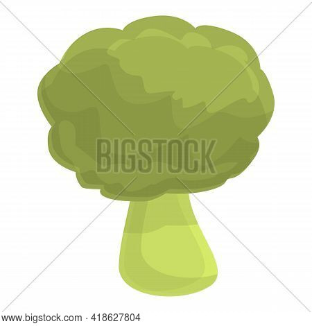 Protein Brocoli Icon. Cartoon Of Protein Brocoli Vector Icon For Web Design Isolated On White Backgr