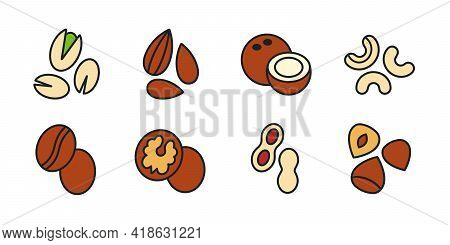 Nuts Icon Set. Vector Linear Color Icon Of Nuts, Contour, Outline Isolated On White. Almond Cashew C