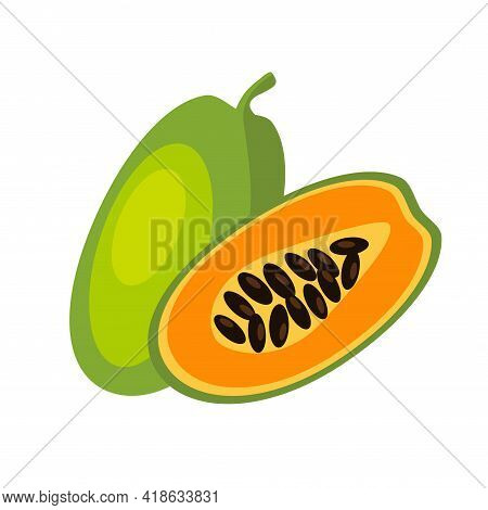 Papaya Fruit, Whole And Sliced. Vector Illustration Hand Drawn Icon Of Summer Healthy Food Entire An