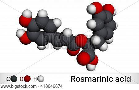 Rosmarinic Acid, Molecule. It Is Polyphenol, Phenylpropanoid, Monocarboxylic Acid, Non-steroidal Ant