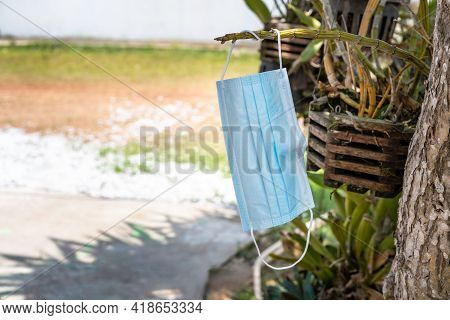 Dirty Used Medical Face Mask For Protection For Covid-19 Hanging On Stalk Of Tree Orchid. Facial Sur