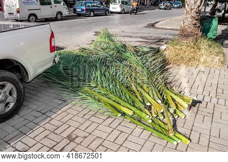 Alanya, Turkey - October 23, 2020: Heap Of Palm Leaves Among The City Street In Alanya. Autumn Pruni