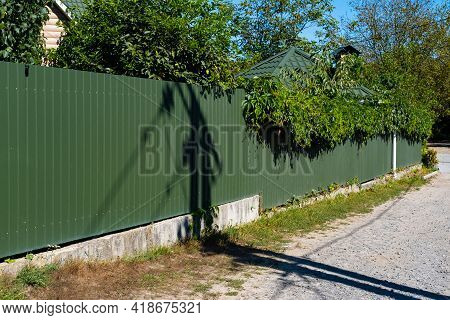 Green Metal Corrugated Fence With Growing Greenery On Top.