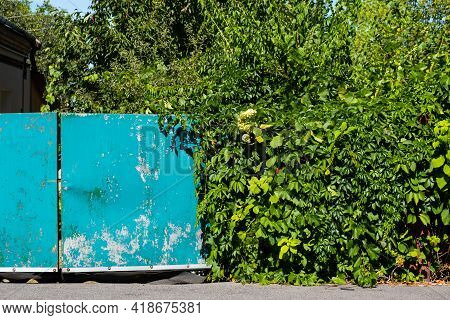 An Old Iron Green Gate With Cracked Paint Near A Residential Building With A Garden.