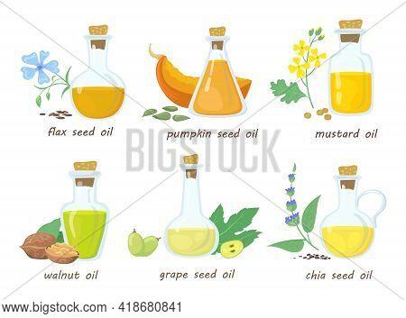 Set Of Cartoon Vegetable Virgin Oils In Glass Jars. Flat Vector Illustration. Colorful Mustard, Waln