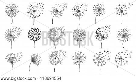 Blowing Dandelion Seeds. Silhouettes Of Fluffy Wish Flowers, Spring Blossom Dandelions Blown By Wind