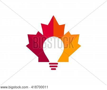 Maple Bulb Logo Design. Canadian Bulb Logo. Red Maple Leaf With Education Bulb Concept Vector