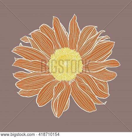 Single Sunflower Head Digital Drawing, Terracotta And Yellow With White Outline On Taupe. Floral Vec