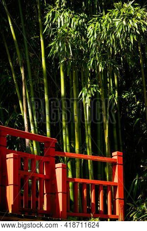Red bridge and bamboo, Japanese garden detail