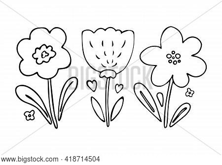 Set Of 3 Cute Flower Doodles In Hand Drawn Simple Style. Floral Vector Collection Of Childish Drawin