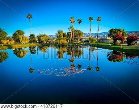 Desert Oasis  Campground Lake Pond With Palm Trees And Shadow Hills Mountains Beyond Reflection Refl