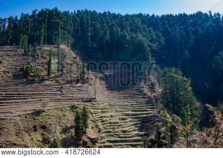 Mountain Rural Lifestyle Picture Of Slanted Fields On Slope Of Mountain