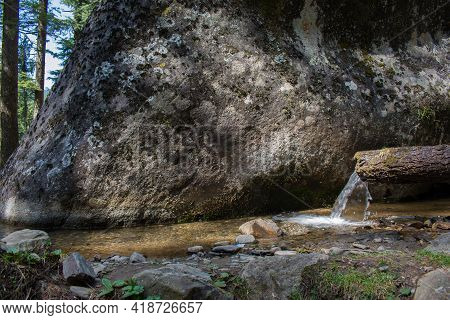 Pure Water In A Small Canal. Water Pouring From Wood Log. Outdoor Picture In Forest