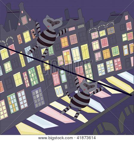 raccoons dressed as a burglar