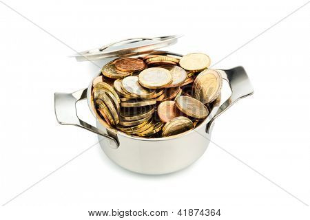 a pot filled with euro coins photo icon for government subsidies
