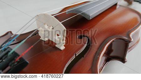Violin string and bridge close up