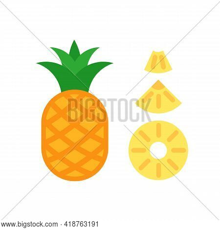 Whole Pineapple And Three Types Of Slices. Round, Triangle And Chunk. Flat Infographic Style.