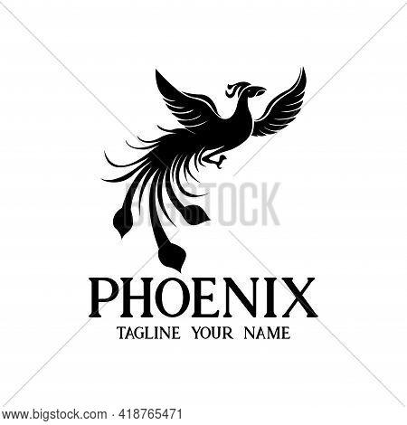 Phoenix Design Logo Vector. Phoenix Animal Logo Vector