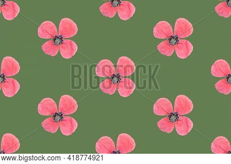 Seamless Floral Pattern With Small Delicate Pink Poppy Flowers On Vintage Green Background. Summer S