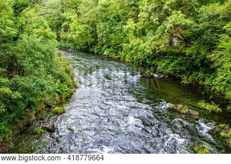 River Flowing In The Forest Surrounded By Growing Vegetation In Galicia, Spain.