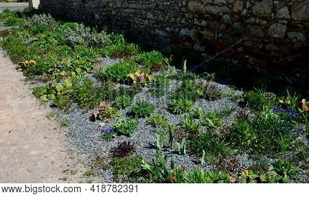 Perennial Bed Mulched With Gray Gravel In Front Of A Limestone Stone Wall In A Square With Benches W