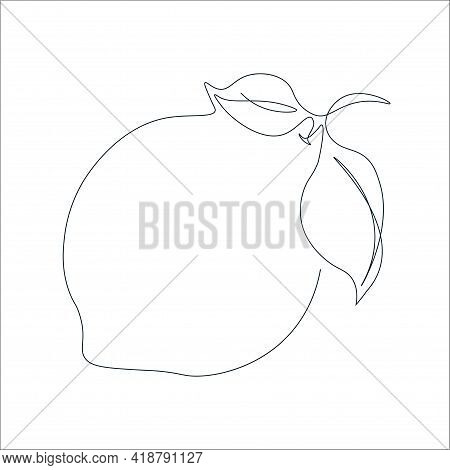 Continuous Single Line Drawing Of A Lemon. Drawing A Whole Fruit With A Single Line. Abstract Minima